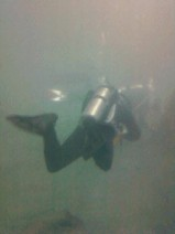 diver applied underwater epoxy paint